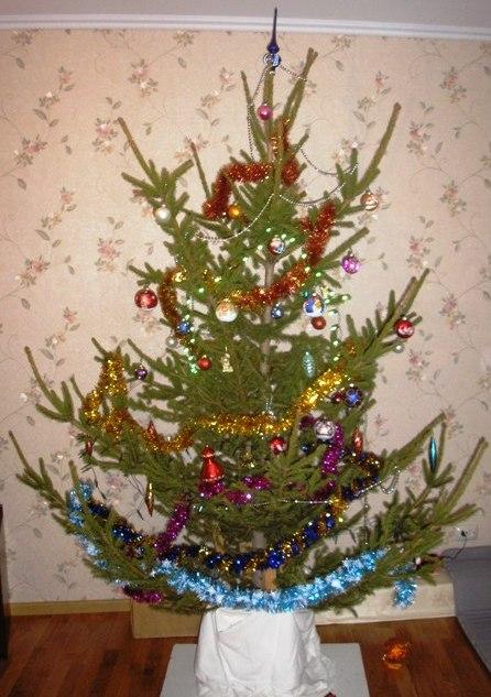 Моя елка. 2010-2011